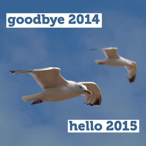 goodbye2014-hello2015